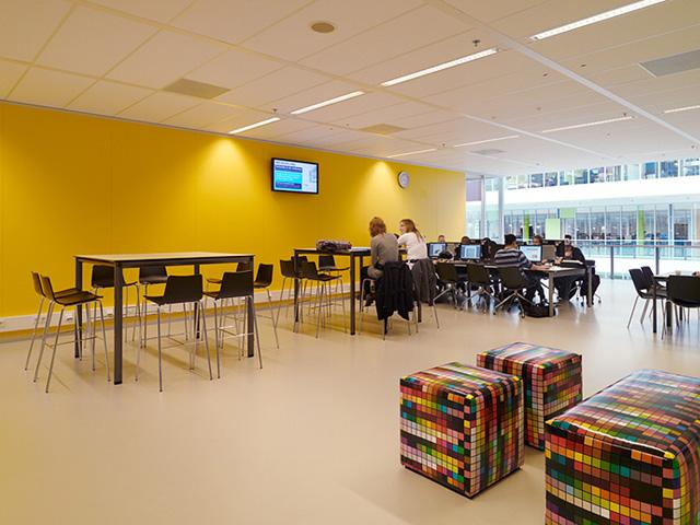 New-Concept Werkgebieden Scholen Onderwijs Leeromgeving Bureaustoelen
